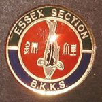 Essex trophy pin green border on top, blue border on bottom