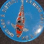 Hoyland & District Koi & Pond fish society Trophy pin