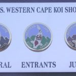 Western Cape 2006 Show - 3 pin sets (limited editon of 15 sets).