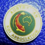 Australian Koi Association trophy pin