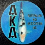 Australian Koi Association trophy pin Bekko