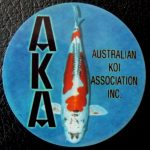 Australian Koi Association trophy pin Doitsu kujaku
