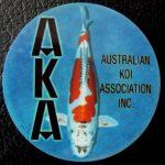 Australian Koi Association trophy pin Doitsu kujaku