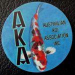 Australian Koi Association trophy pin Hikari Utsurimono