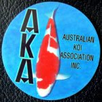 Australian Koi Association trophy pin Kohaku