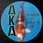 Australian Koi Association trophy pin Kujaku