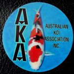 Australian Koi Association trophy pin Sanke
