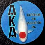 Australian Koi Association trophy pin Tancho