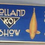 2010 Volunteer pin Blue