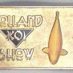 2010 Volunteer pin Gold