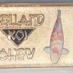 2011 Volunteer pin Gold
