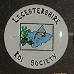 Lecestershire (mispelt) Koi society trophy pin
