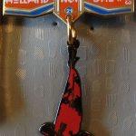 21st Holland Koi Show 2013 (with dangling Hi Utsuri under the royal ribbon)