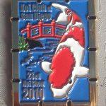 2010 - Show pin