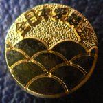 ZNA Clubpin Gold