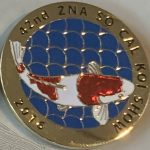 42nd Annual Koi Show 2016 Blue scales