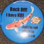San Diego button Back Off I have Koi