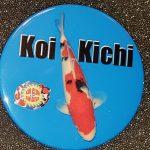 San Diego button Koi Kichi