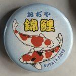 Ojiya Koi Museum magnet pin yellow lettering